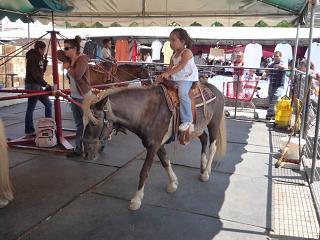 サンノゼ、回転木馬.jpg